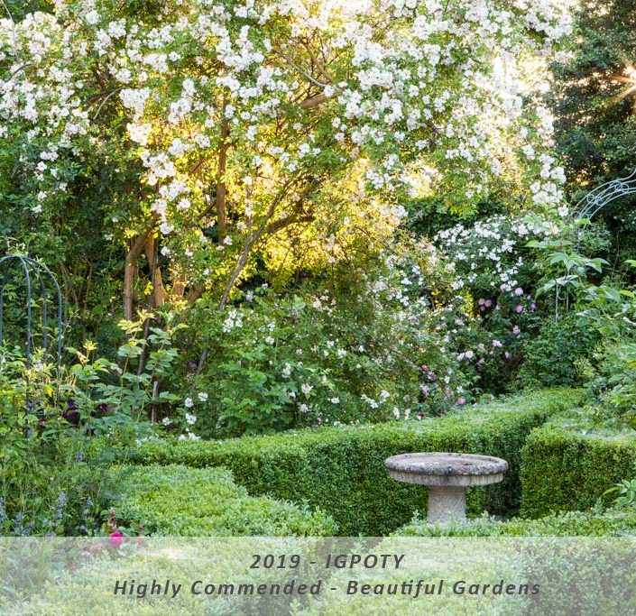 "IGPOTY Highly Commended – Category: Beautiful Gardens – ""Morning Light"""