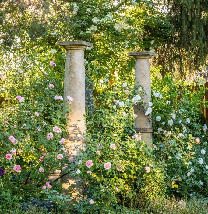 "IGPOTY Highly Commended – Category: European Garden Photography Award – ""Rose Garden"""